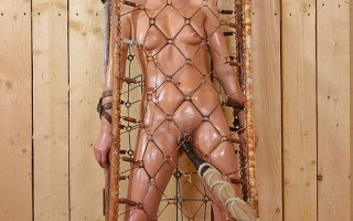 Beautiful Sophie Lynx is Bound Caged, Probed, & Pees Herself